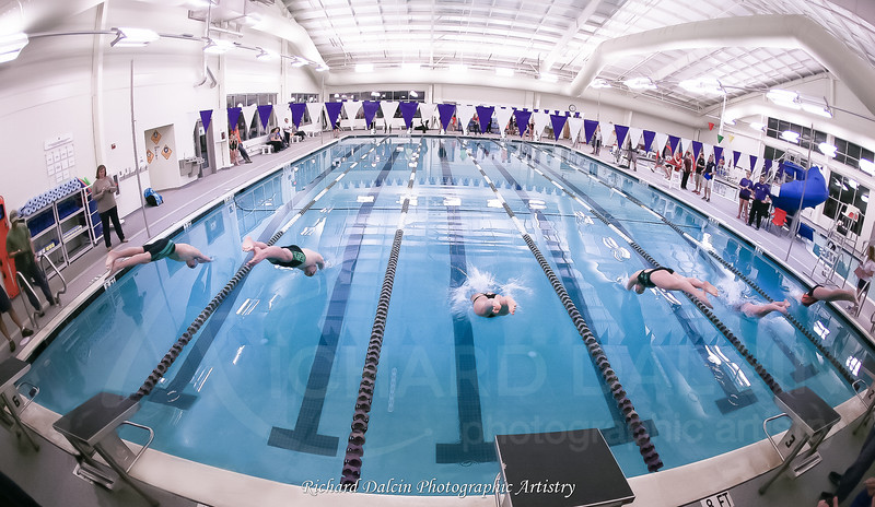 Swim Gallery