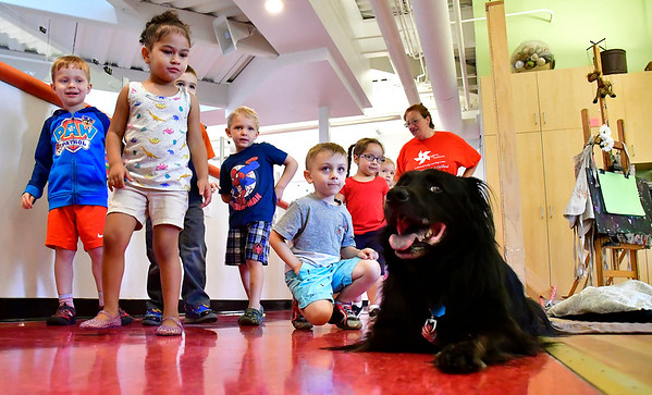 7/25/2019 Mike Orazzi | Staff Children meet Winston Louie during the Dog Days of Summer program held at the Imagine Nation, A Museum Early Learning Center in Bristol Thursday morning.