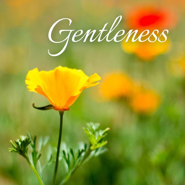48_Galatians5-22-23_NJ_Fruit of the Spirit_4-23-17_8-Gentleness.jpg