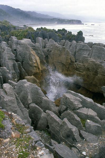 NZ_048.jpg