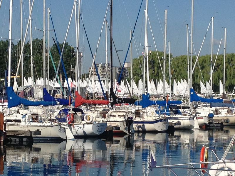 6/22 looking through the masts at Etobicoke Yacht Club at the Lasers rigged and ready to sail.