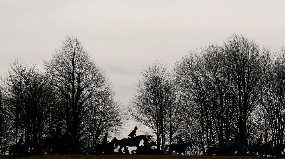 Description of . Members of the Quorn hunt take part in the traditional Boxing Day meet at Prestwold Hall near Loughborough, central England, December 26, 2012. A ban imposed seven years ago states that foxes can be killed by a bird of prey or shot but not hunted by dogs. Hunts continue nowadays with pursuers accompanying dogs in chasing down a pre-laid scented trail.  REUTERS/Darren Staples