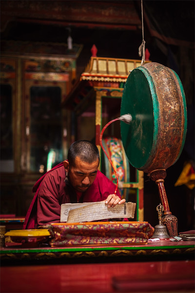 Praying monk. Hemis gompa, Ladakh