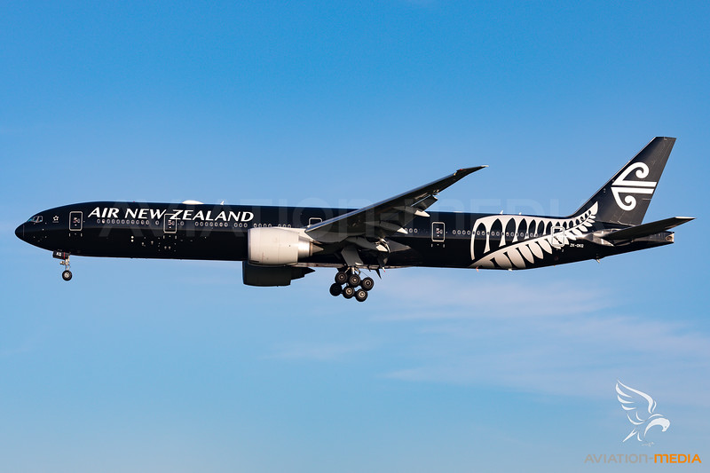 All Blacks Livery