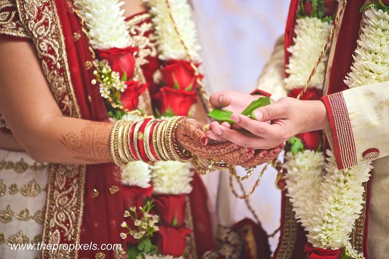 Khushbu-Wedding-2018-03-24-001820.JPG