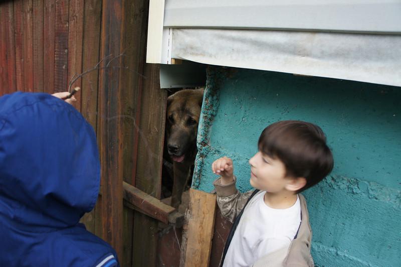 2012-06-02 Князевы Дача 28 .JPG