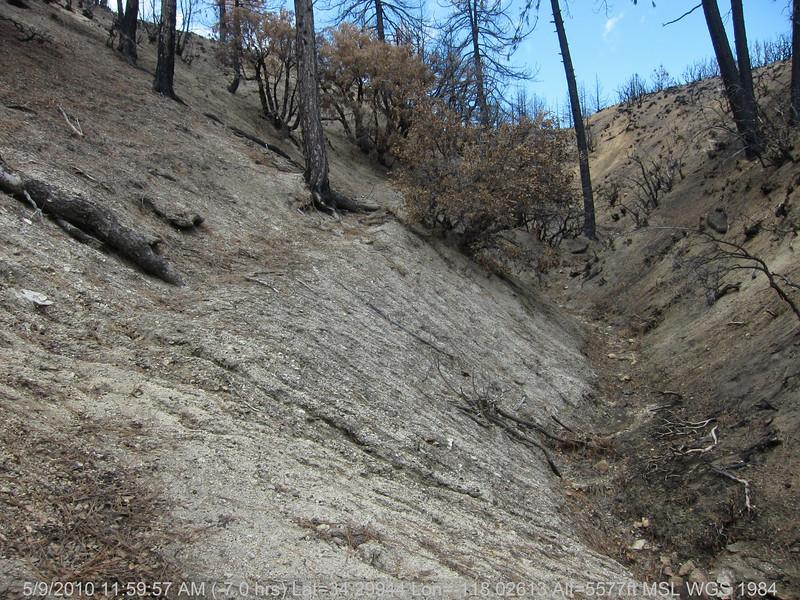 20100509078-Trail Recon, Vetter Mountain Trail.JPG