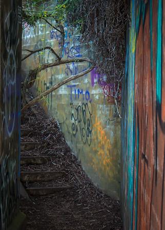 Grafitti & Decay