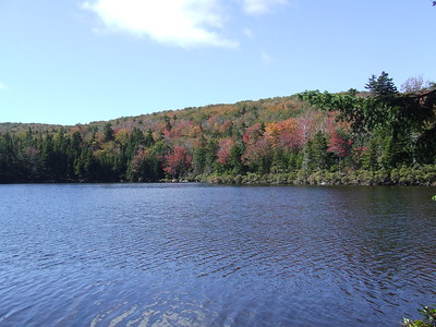 Green Mountain National Forest (Vermont)