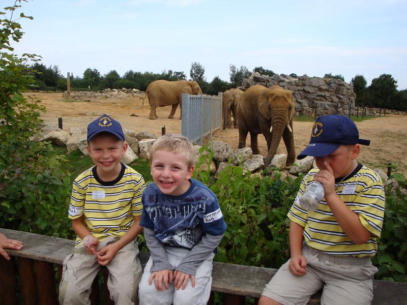Colchester zoo (5).jpg