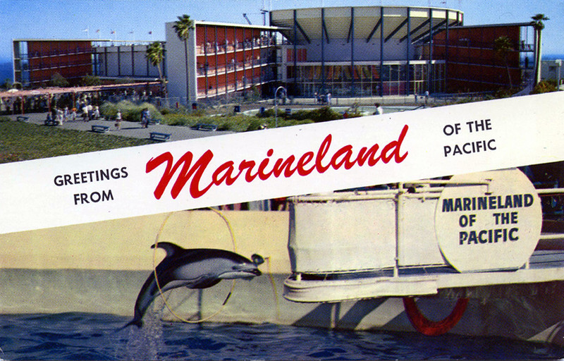 Greetings from Marineland