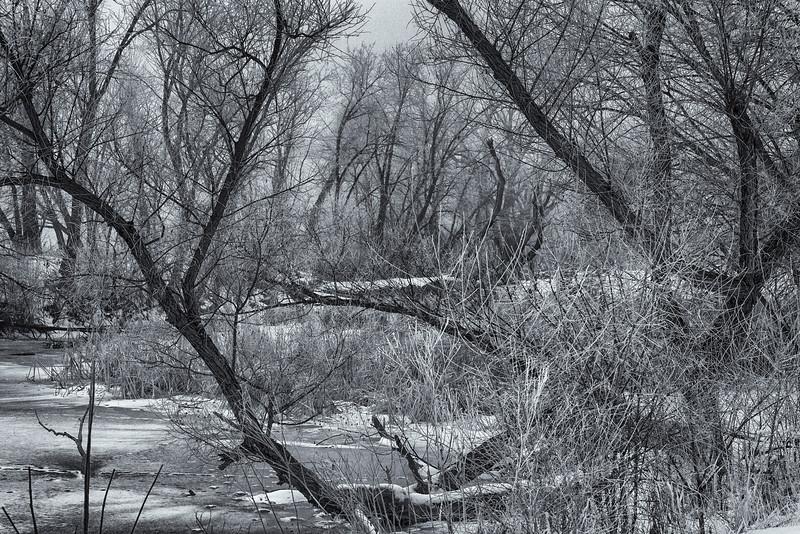 Winter12242016-1.jpg