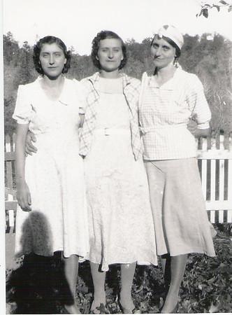 Greer Benjamin Franklin Rowlette Family