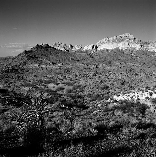 Open Desert, near Nelson, NV. June 2001
