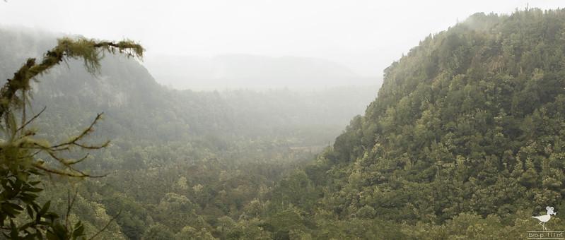Tarawera 5.jpg