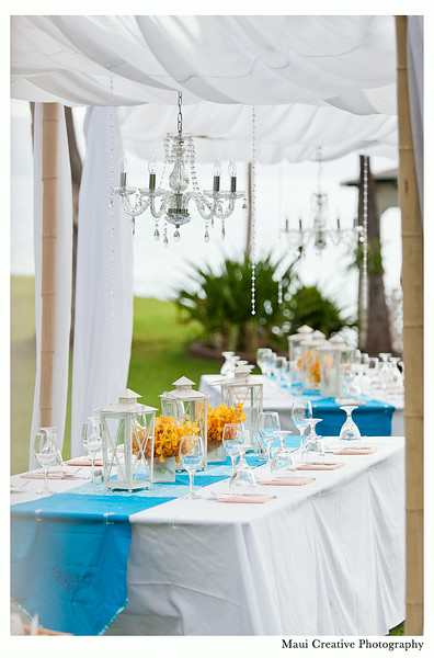 Maui_Wedding_Photographers_Sugarman_Estate_244.jpg
