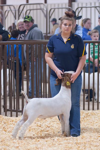 kay_county_showdown_goats_20191207-47.jpg
