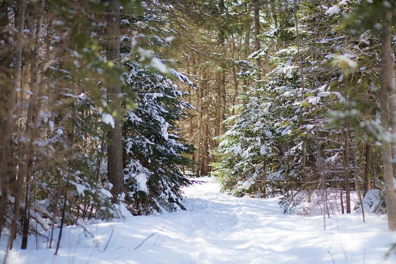 WinterRiverMarch17-8-1.jpg