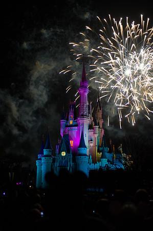 Magic Kingdom - Fireworks 1