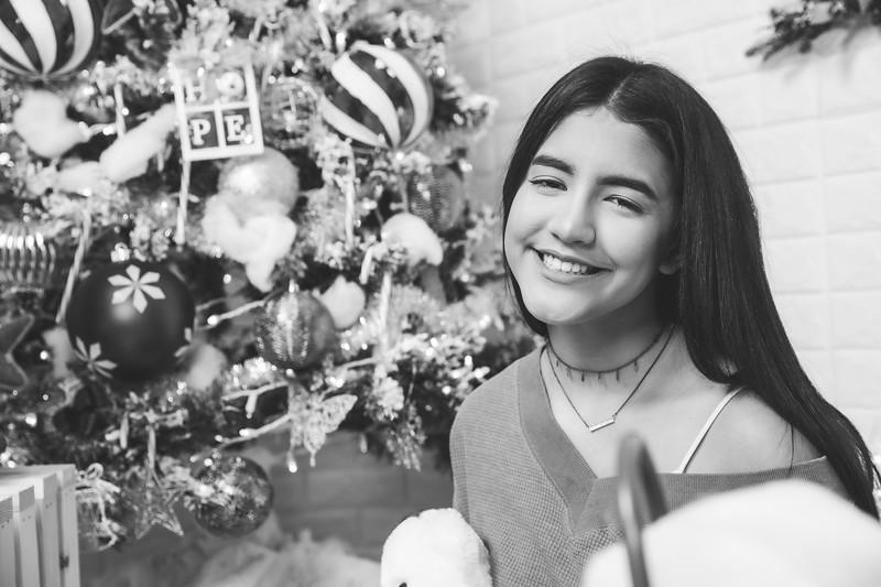 12.18.19 - Vanessa's Christmas Photo Session 2019 - 45.jpg