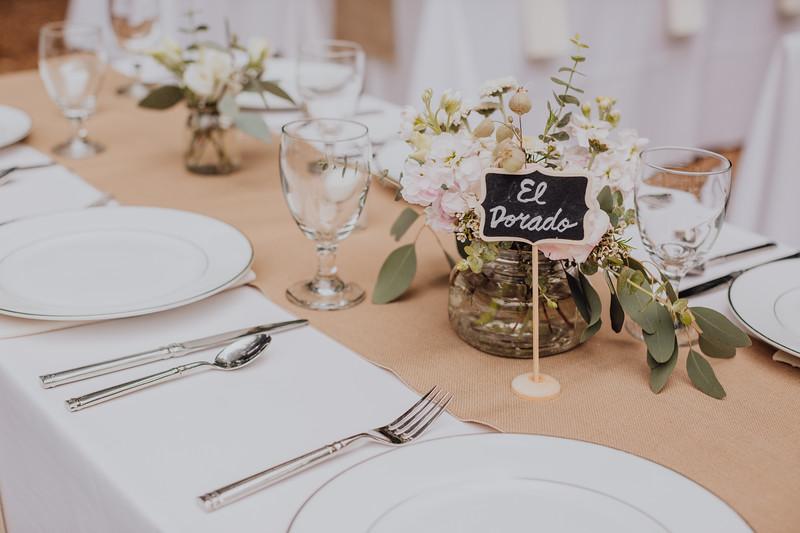2018-05-12_ROEDER_JulieSeth_Wedding_DUSTIN2_0026.jpg
