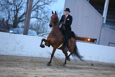60. Three Gaited Jackpot
