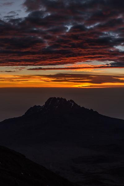Kilimanjaro_Feb_2018-64.jpg