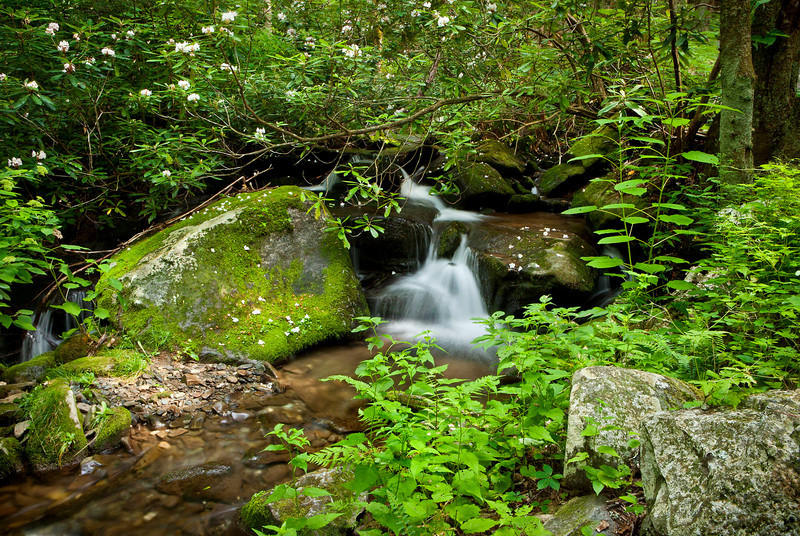 Roaring Fork stream scenic 2, Great Smoky Mountains
