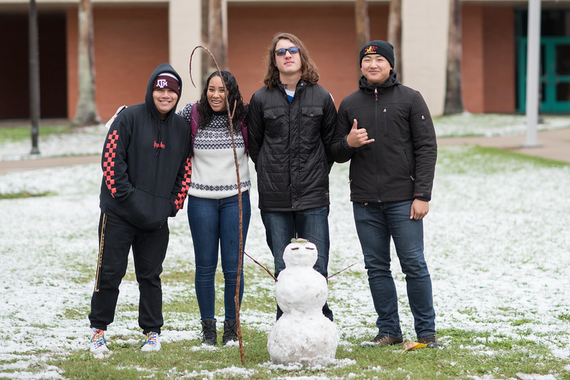 Fall 2017 snow at Texas A&M University - Corpus Christi.