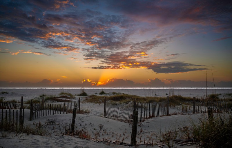 Sunrise Isle fo Palm 2.jpg
