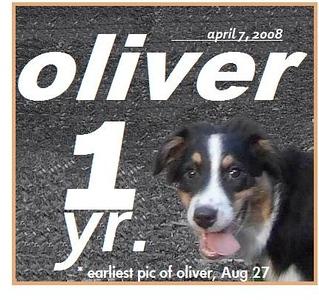 OLIVER 1YR  APR. 07