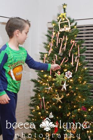 december 6. 2010 christmas tree decorating