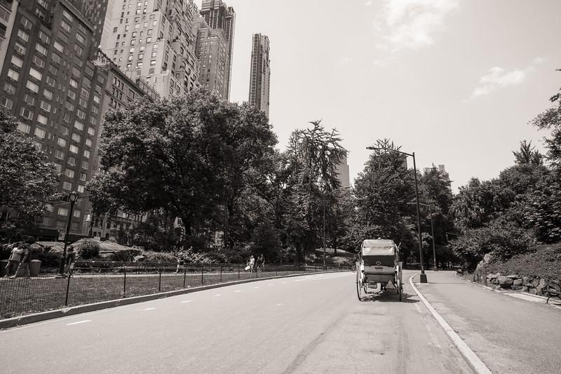 Central Park Wedding - Ronica & Hannah-14.jpg