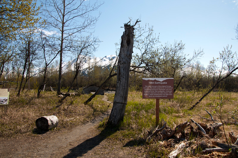 Site of the 1964 Alaska earthquake.  This area, Portage, was hit hard by the earthquake.  It was under water and never rebuilt.