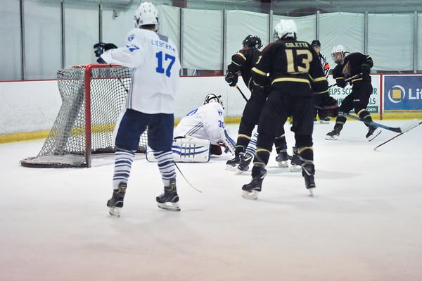 FSU Ice Hockey 2019-2020 Season
