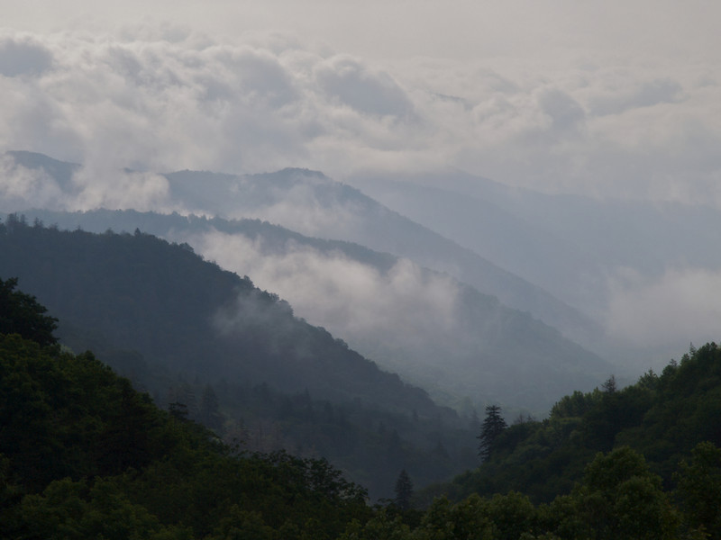 May - Newfound Gap, Great Smoky Mountains National Park, Tennessee