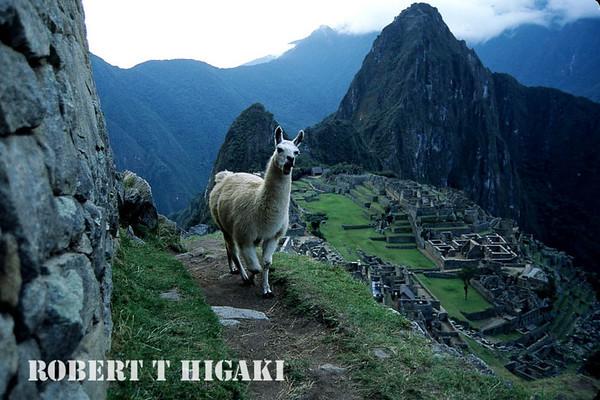 Cuzco and Machu Picchu, Peru