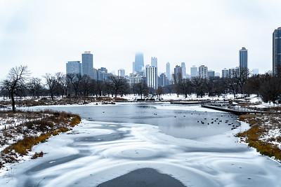 Chicago Trip 2020