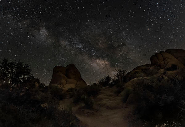 Joshua Tree Park at Night 2017