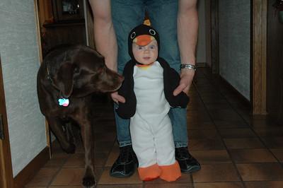 Parkside Penguin