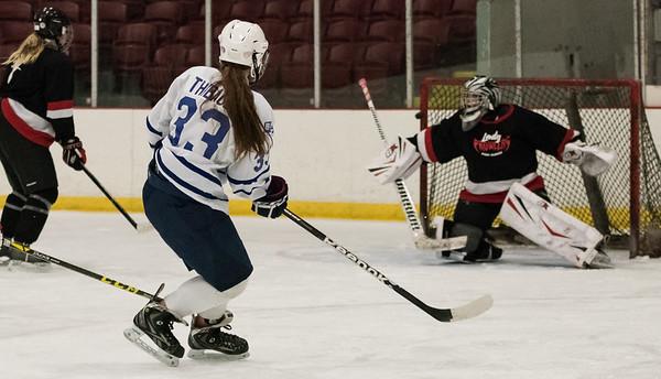 Regina v Port Huron, Hockey, 3-2-16
