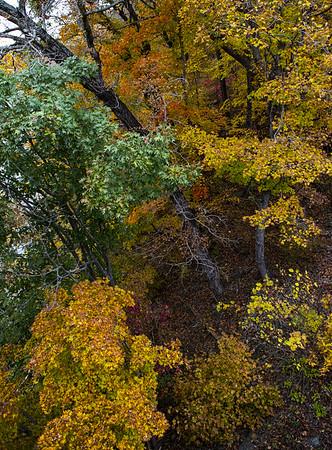 Fall color Gasconade River