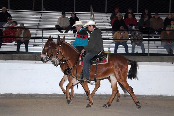 2011 Gaited Mule Show