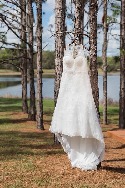 ELP0224 Sarah & Jesse Groveland wedding 315.jpg