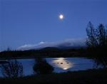 moonbeams-geese.jpg