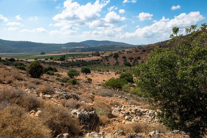 Israel-7316.jpg