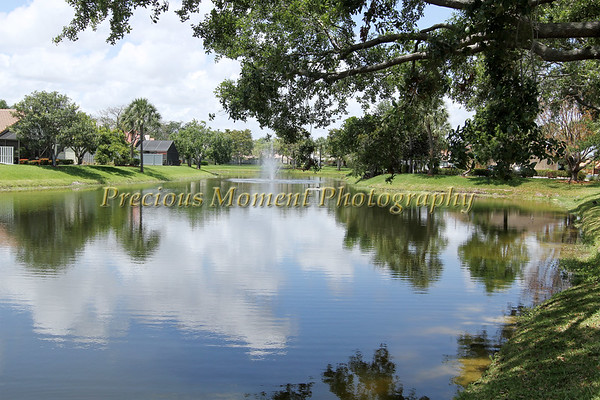 Citrus Glen - Boynton Beach, Florida
