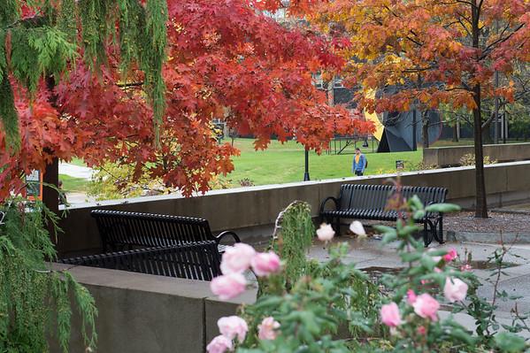 10/22/19 Campus Scenics