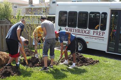 5.2011 Senior Gift: 20 Trees