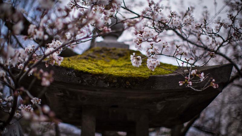 Nagano  12042013 015.jpg